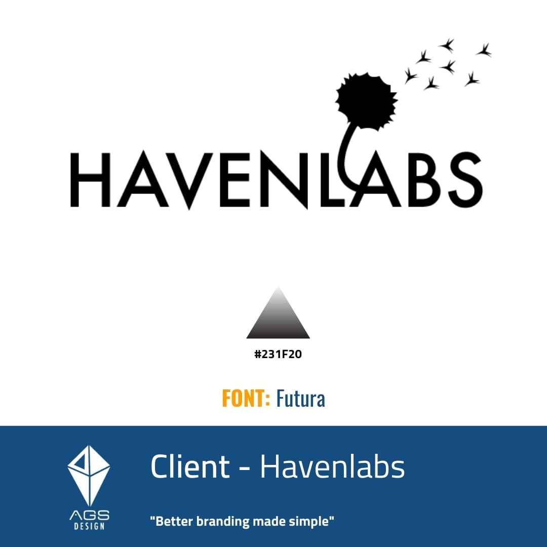 HavenLabs Brand Identity